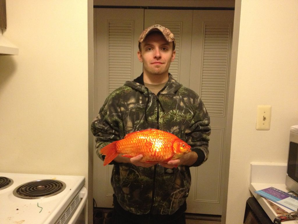 3 Pound Goldfish - Icefishing Lk. St. Clair